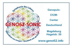 logo-273x180-geno62-2