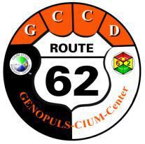 LOGO GCCD