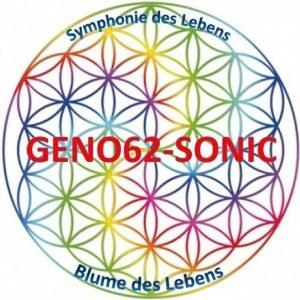 LOGO-leer-Geno62